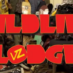 VZ Wildlife Lodge