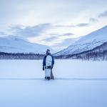 Arctic Lights – Endless Playground