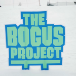 The BOGUS Project