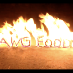 DAWG FOOD 2