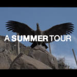 DC TRANSITORS x SOUTH AMERICA x A SUMMER TOUR